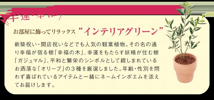 """お部屋に飾ってリラックス """"インテリアグリーン"""""""